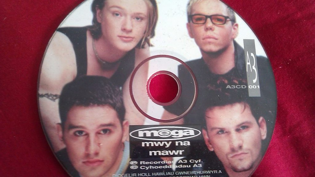 Y 90au oedd y degawd pryd wnaeth CDs ddatblygu...a diflannu. Dyma CD'r band Mega