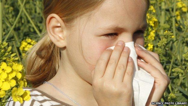 Child will allergy
