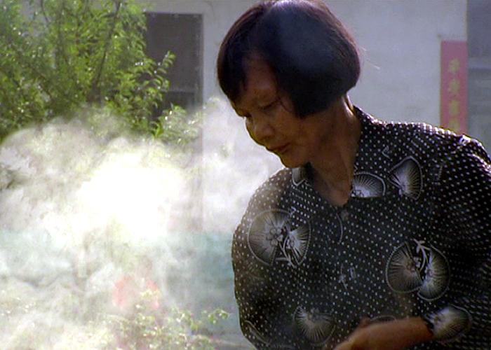 Xiang Caiping, 2006
