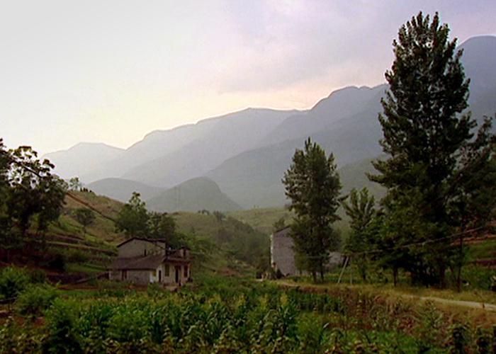 White Horse Village, 2006
