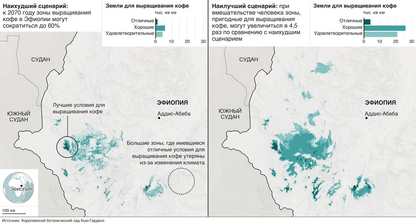 На карте показаны изменения количества кофейных плантаций в Эфиопии, согласно данным из отчета центра в Кью.